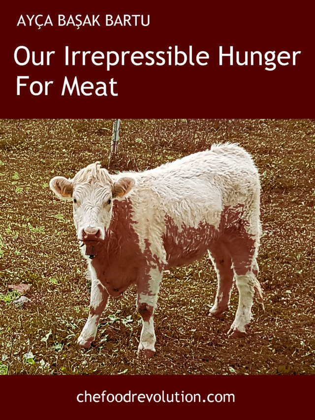 Our Irrepressible Hunger For Meat