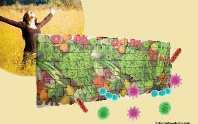 Sağlıklı beslenme: bağışıklık sistemini güçlendirmek