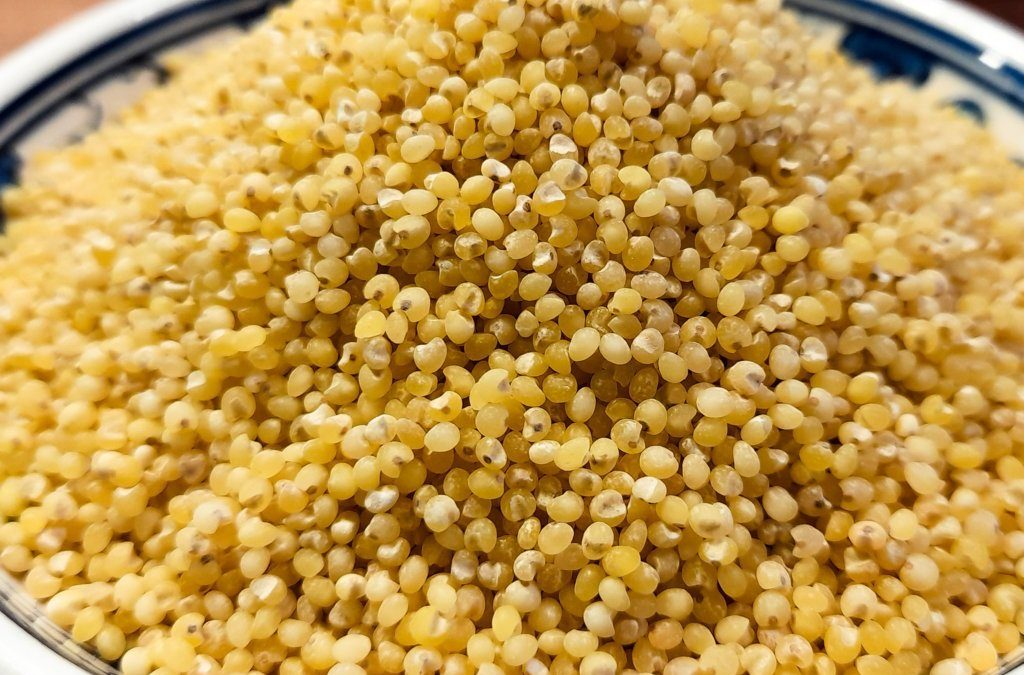 What is Millet: Properties, benefits, why and how to cook it