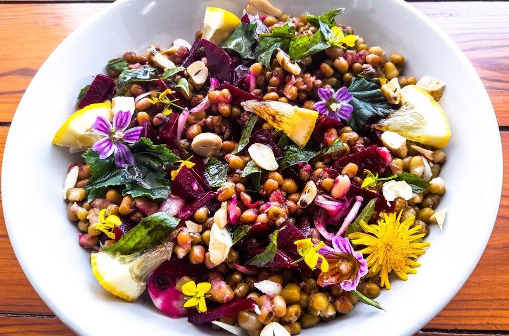 Yabani ot ve çiçekli maş fasulyesi salatası: baharı tabağınıza taşıyın
