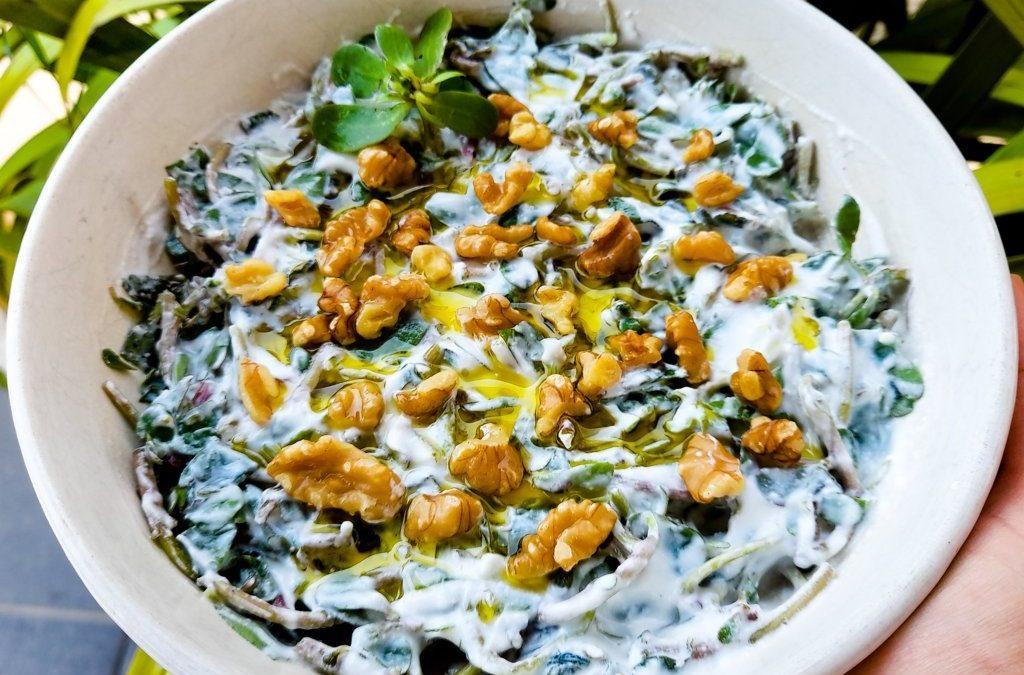 Cevizli ve yoğurtlu semizotu salatası: serinletici ve Omega 3 zengini tarif