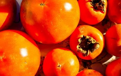 Benefits of Persimmons, a super food to discover: tips and recipes