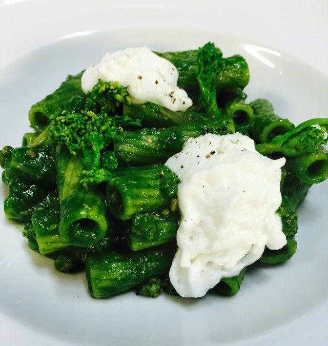 Rigatoni, broccoli and pecorino cheese