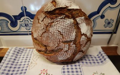 No-knead sourdough wholemeal spelt bread